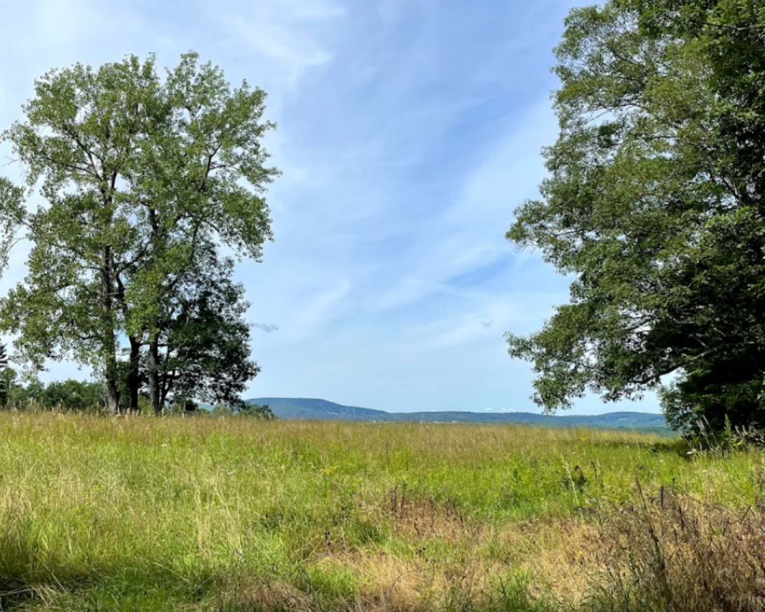 Secret Scenic Walks and Hikes in and around Great Barrington